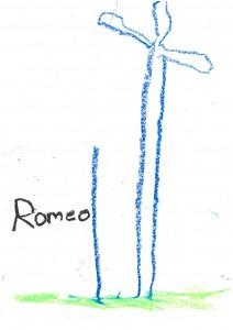 Romeo (1)